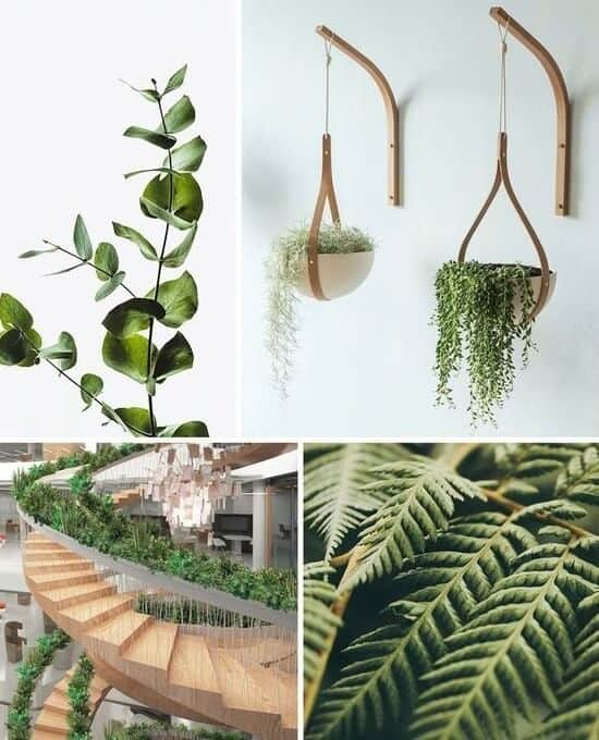 biophilia-interior-design